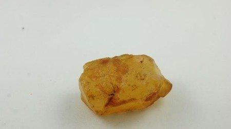 bursztyn bałtycki przeźroczysty żółty surowy 25,6 g