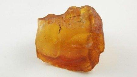 bursztyn bałtycki surowy unikatowy żółty biały 114,7 g